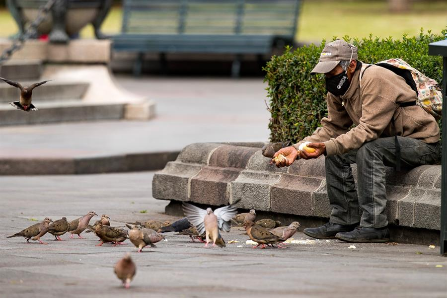Men wearing a mask (to protect from COVID-19) sitting on a park bench in Quito Ecuador feeding birds