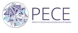 PECE logo