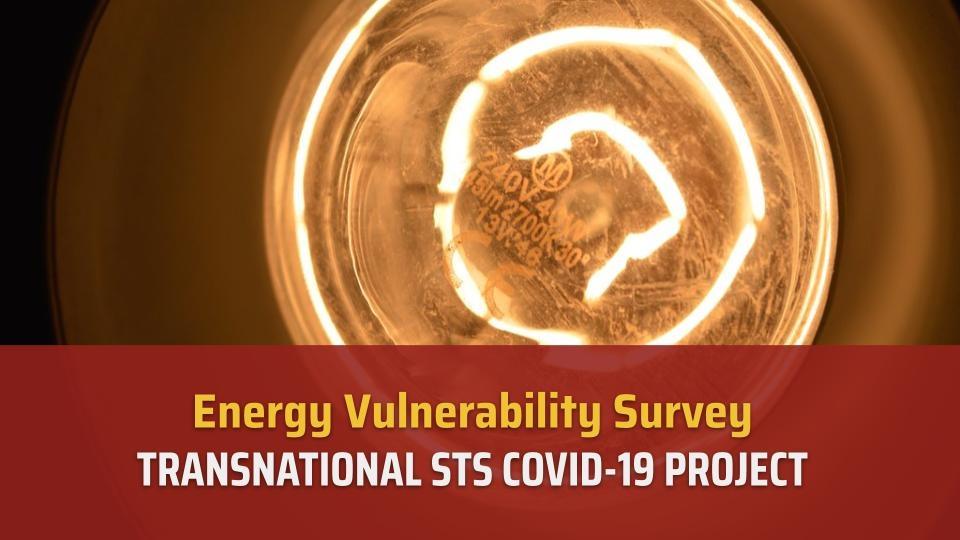Energy Vulnerability Survey